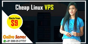 Cheap Linux VPS Hosting Servers – These are 4 facts for online business